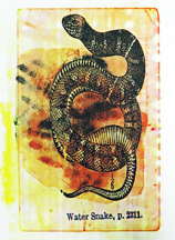 INCARNATION, 2005; Screenprint; Image: 15 1/2 x 10 inches
