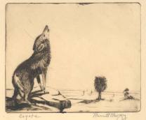 Coyote, nd., Etching; Image: 6 x 7 inches