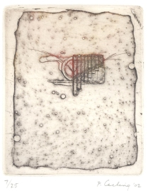 Grass Series 1, 2002; Etching; Image: 10 1/2 x 7 1/2 inches