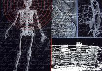 Harvester, circa 2000-01; Screenprint; Image: 22 x 30 inches