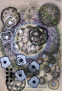 Radiolaria #4, 2007; Inkjet, screenprint, painting; Image: 20 x 13 inches