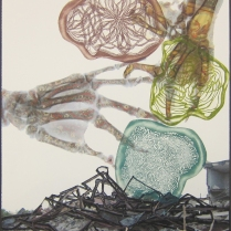 Builder Bones; Digital transfer, chine colle; Image: 13 3/4 x 11 inches
