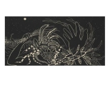 James Surls (born 1943); Night Vision, 1991; linocut; image: 34 1/2 x 71 inches