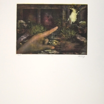 Margaret Craig; Bad Birds: Out, 1996; Photo etching; Image: 180 mm x 254 mm