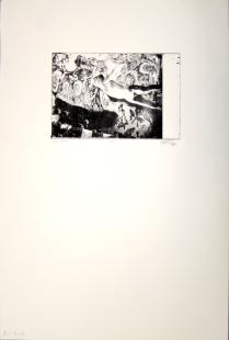 Margaret Craig; Bad Birds: Under, 1996; Photo etching; Image: 141 mm x 212 mm
