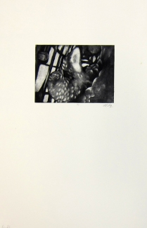 Margaret Craig; Bad Birds: Untitled, 1996; Photo etching; Image: 135 mm x 180 mm