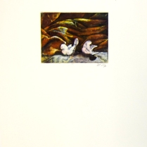 Margaret Craig; Bad Birds: Untitled, 1996; Photo etching; Image: 130 mm x 172 mm