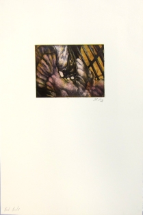 Margaret Craig; Bad Birds: Untitled, 1996; Photo etching; Image: 134 mm x 180 mm