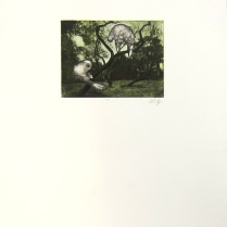 Margaret Craig; Bad Birds: Untitled, 1996; Photo etching; Image: 125 mm x 166 mm