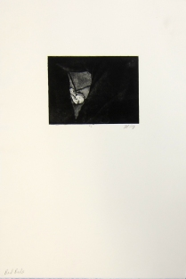 Margaret Craig; Bad Birds: Untitled, 1996; Photo etching; Image: 134 mm x 180 mm;