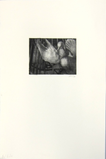 Margaret Craig; Bad Birds: Untitled, 1996; Photo etching; Image: 127 mm x 169 mm