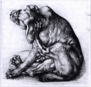 Master of the Housebook;  Old Bulldog Scratching Himself,c. 1485; Drypoint; Image: 114 x 111 mm (Reproduced from the Web Gallery of Art)