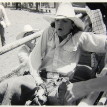 Bareback Riding, In Chute, 1985; Gelatin silver print; Image: 305 x 406 mm