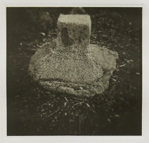 Untitled (sq. head pattie), 2002; Film matrix collotype, chine colle; Object size: 508 x 380 mm