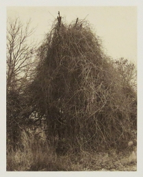 Untitled (teepee), 2010; Film matrix collotype, chine colle; Object size: 484 x 379