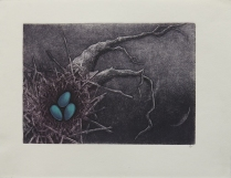 Untitled; Etching; Object size: 253 x 330 mm
