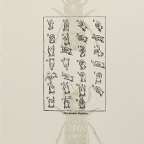 Untitled; Lithograph, Etching; Object size: 192 x 140 mm