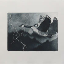 Steady On, 1995; Lithograph, Etching; Object size: 378 x 455 mm