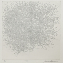 Tree, 1969; Etching; Paper size: 390 x 352 mm