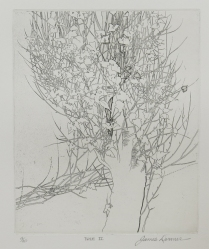 Tree II, 1973; Etching; Paper size: 418 x 338 mm