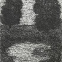York's Twin Trees, 1997; Etching; Paper size: 379 x 331 mm
