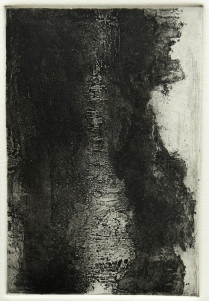 Terrell James; Untitled, 1994; Etching, aquatint, sugar lift, drypoint, burnishing; Paper size: 258 mm x 190 mm
