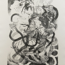 Ryan Cronk; Fruit Fly Conspiracy, 2009; Lithograph; Image: 445 mm x 297 mm