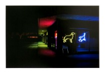 Animal Hospital, Santa Cruz, California, 2013; Archival Inkjet; Object size: 329 x 480 mm