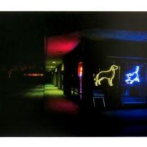 Animal Hospital, Santa Cruz, California, 2013; Archival Inkjet; Object size: 329 x 480 mm