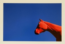 Red Horse Bishop, California, 2013; Archival Inkjet; Object size: 329 x 480 mm
