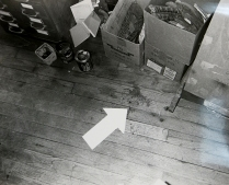 A Case of XX 13, 1981; Silver gelatin print; Object size: 279 x 356 mm