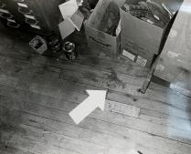 A Case of XX 13, 1981; Silver gelatin print; Object size: 279 x 356 mm