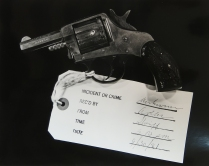 A Case of XX 33, 1981; Silver gelatin print; Object size 279 x 356 mm