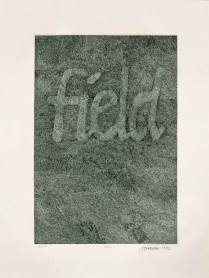 Field, 1976; Intaglio; Obj size: 609 x 467 mm