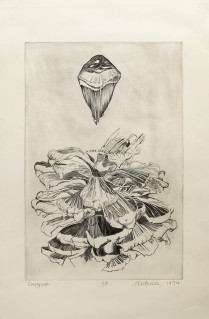 Empty Cone, 1974; Engraving; Obj size: 615 x 409 mm