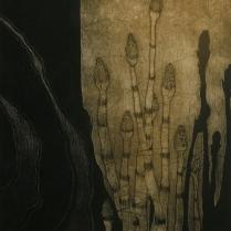 Aquifer Seep, 2006; Etching, ala poupee; Image size: 354 x 282