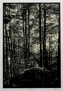 Versailles, 2011; Woodcut, chine collé; Image size: 555 x 378 mm
