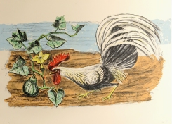 Otis Dozier; Rooster (with squash plant), 1987; lithograph (415x762mm)