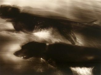 Jack Spencer, Water Dogs, 1998; silver gelatin print, toned