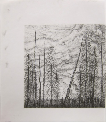 Stanley Donwood; untitled, 2013; inkjet