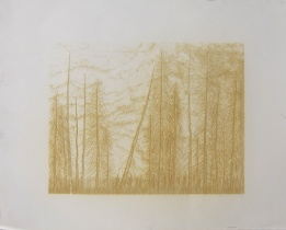 Stanley Donwood; Wait here till we come for you, 2013; laser engraving test proof