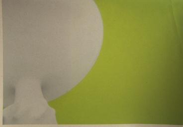 Sebastian Schramm; Green, 2012; inkjet