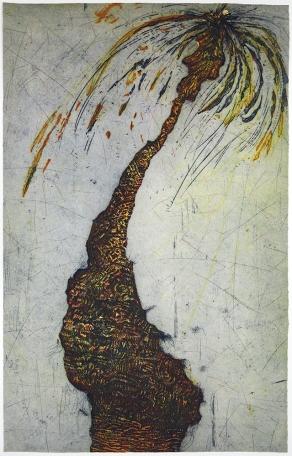 Penny Cerling; Street Palm - Montrose @ Lovett, 1984; etching; 764x484 mm