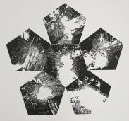 Neal Cox; Untitled Proof no. 2 (From stellated dodecahedron camera), 2014; Linocut; 570mmx610mm