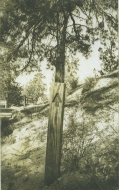 Neal Cox; Arrow no. 8, 2014; Photogravure; 383mmx290mm; Edition 10/10