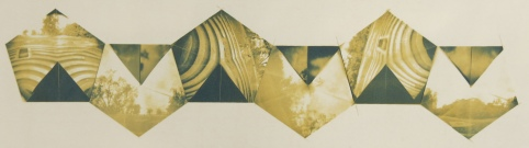 Neal Cox; Pecan Park no. 2, 2010; Gum bichromate over cyanotype; 260mmx595mm; Edition 4/4