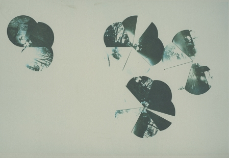 Neal Cox; Dome 5.3, 2011; Collotype; 284mmx358mm; Edition 3/5 E.V.