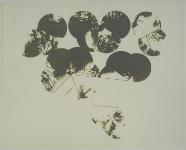 Neal Cox; Dome 5.4, 2011; Collotype; 286mmx357mm; Edition 3/5 E.V.