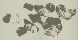Neal Cox; Dome 5.6, 2011; Collotype; 259mmx414mm; Edition 4/5 E.V.