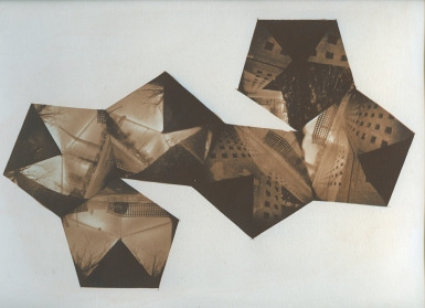 Neal Cox; Centennial Park, 2011; Gum bichromate over cyanotype; 350mmx250mm; Edition 1/6